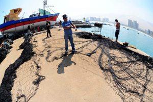El sicariato pesquero y el saqueo del mar en chile