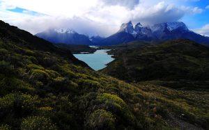 Algo huele mal en la Reserva Mundial de la Biósfera Torres del Paine