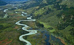 Servicio de Biodiversidad y Áreas Protegidas: El legado ambiental de la presidenta Bachelet