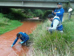 Contaminación en río Trainel: A detener la corrupción estatal y la destructiva salmo-industrialización de Chiloé