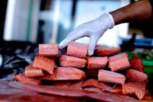 #1deMayo: Morir trabajando en la industria exportadora de salmones en Chile