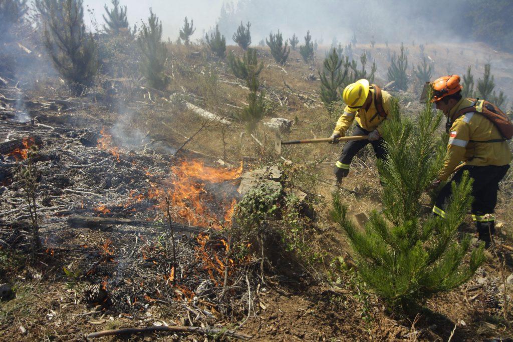 Fuego técnico: Los cuestionamientos y alternativas a la práctica para prevenir incendios