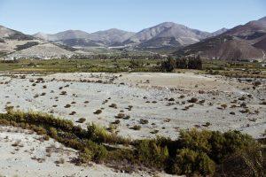 Chile: el único país en donde un palto tiene más derecho al agua que tú y donde 24 son menos que 12
