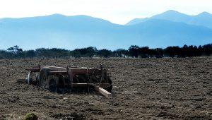 Día de Lucha contra la Desertificación y la Sequía: La Restauración de la naturaleza en la nueva Constitución