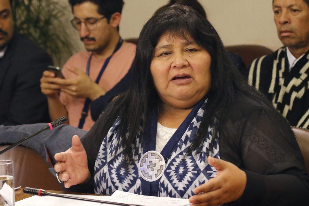 Emilia Nuyado: «Ahora la tarea del Parlamento es consagrar escaños reservados para los Pueblos Indígenas»