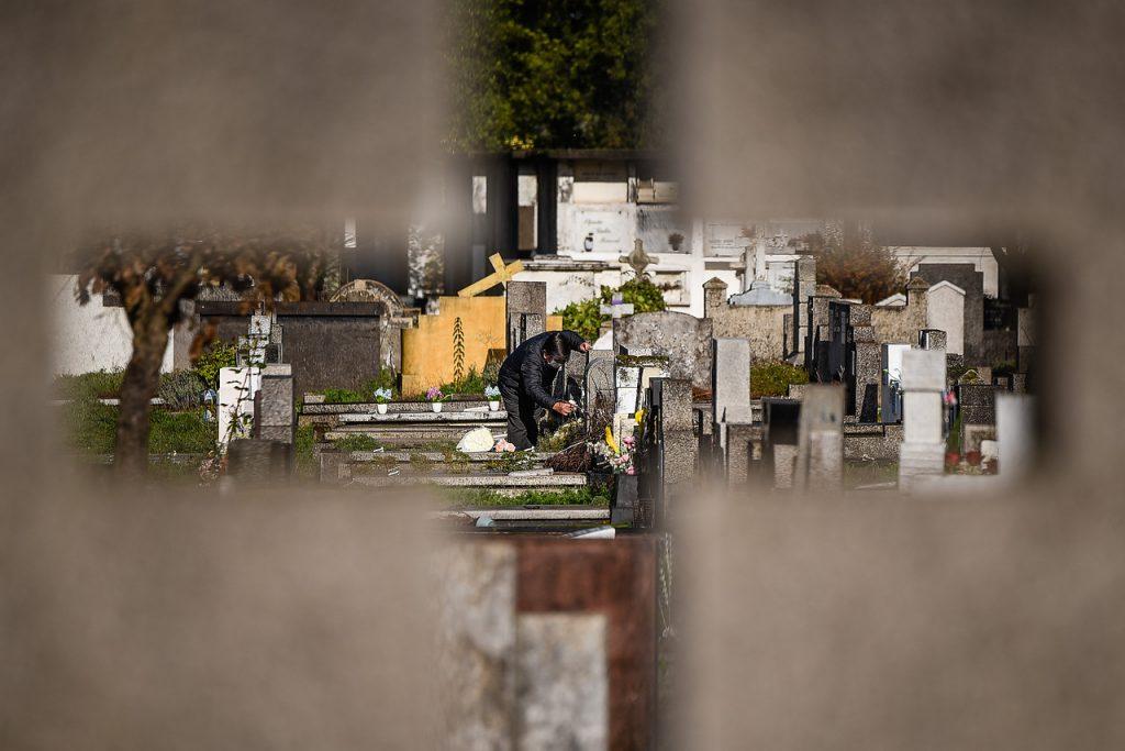 COVID-19: Estudio italiano ilustra cómo reducir en 50% sus víctimas
