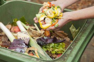 Ministerio del Medio Ambiente presentó propuesta de Estrategia Nacional de Residuos Orgánicos