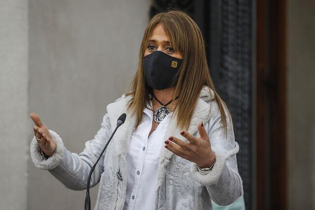 Oficialismo insiste: Jacqueline Van Rysselberghe llamó a decretar Estado de Sitio en la macrozona sur del país