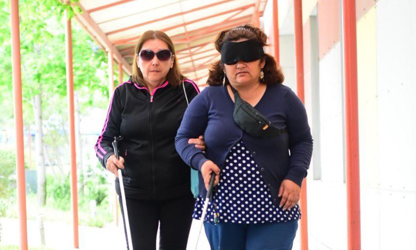 Plebiscito 2020: ¿Cómo deben votar las personas con discapacidad visual?