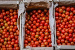 IPC de septiembre tuvo variación de 0,6%: Tomates sufrieron una pronunciada alza
