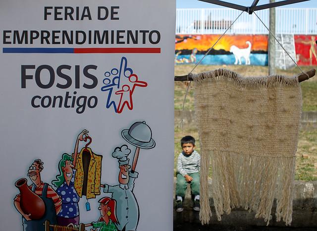 FOSIS desvincula a 28 personas en pandemia: Trabajadores a contrata y a honorarios paralizan actividades y exigen reintegro de sus colegas