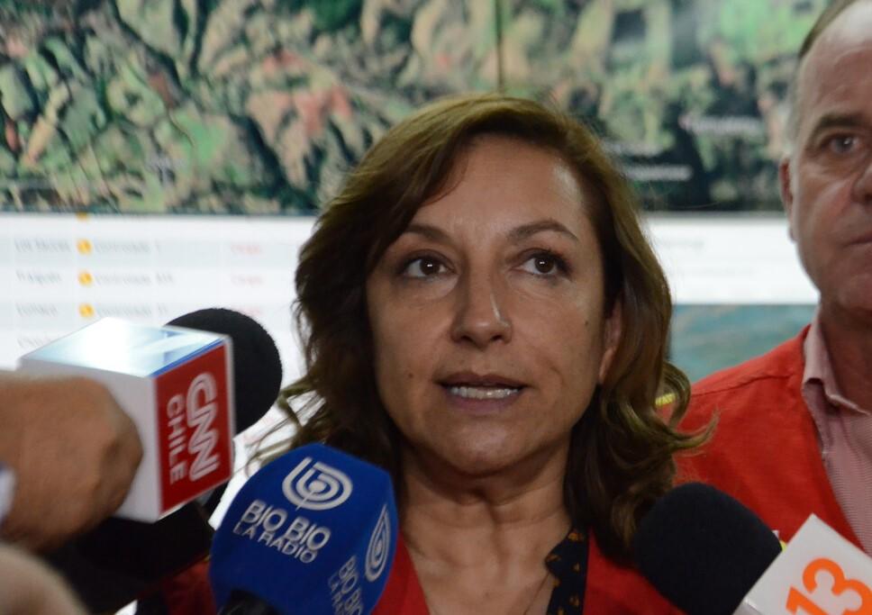 """Conaf sobre incendio forestal en Quilpué: """"Esto tuvo una intencionalidad extrema"""""""