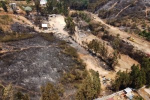 OPINIÓN   Incendios forestales para establecer agricultura, plantaciones y proyectos inmobiliarios