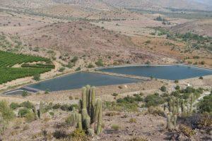 Estudio identifica a Chile como el único país con expresa propiedad privada de derechos de agua