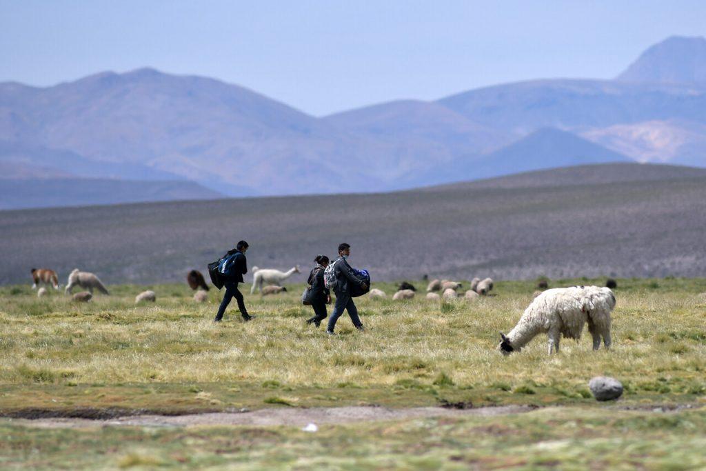 Crisis migratoria no le da tregua a Chile: Dominicano muere en Colchane