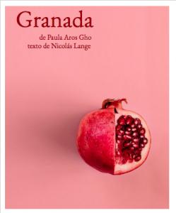 Granada teatro presencial