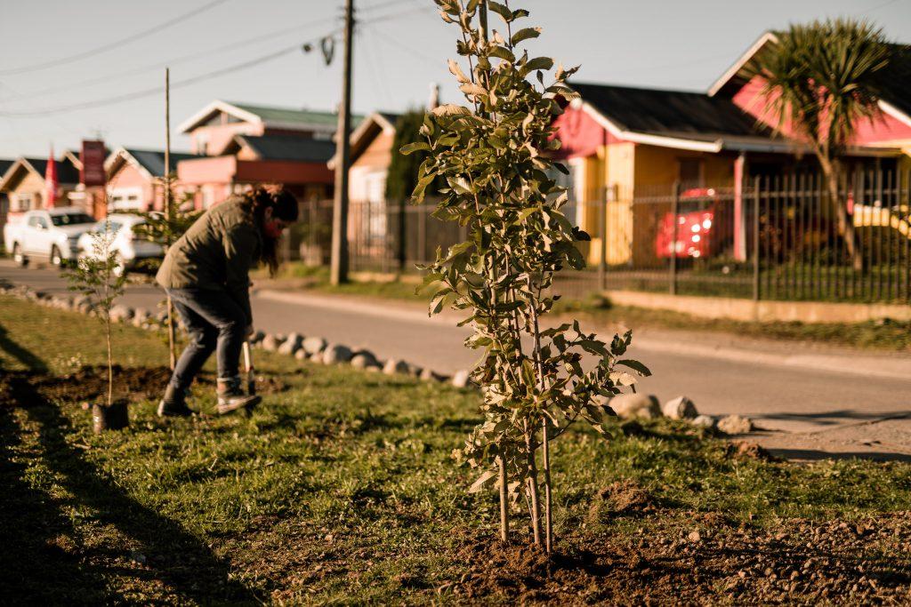 Municipio Verde: Lanzan compromiso para que candidatos a alcalde firmen por mejorar la gestión ambiental