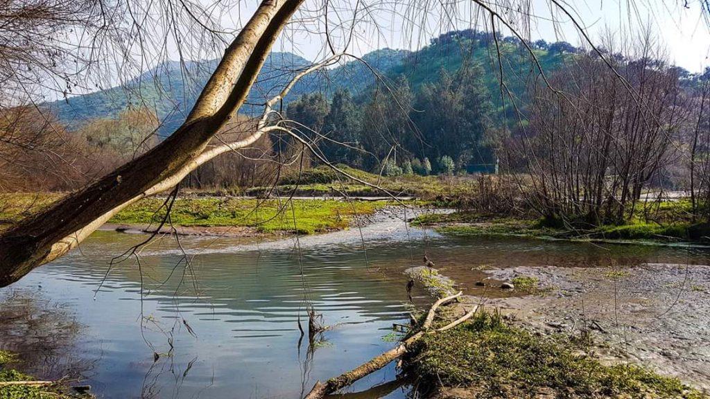 Región Metropolitana: 7 ecosistemas buscan convertirse oficialmente en Humedales Urbanos