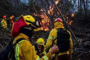 Formalizan a siete brigadistas forestales por incendio que consumió 15 mil hectáreas