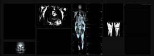 """""""Cartografías de la Sangre"""": La exposición que confluye de la ciencia y el arte"""