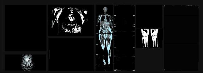 «Cartografías de la Sangre»: La exposición que confluye de la ciencia y el arte