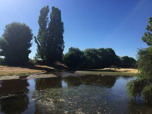 """""""Milagro, llegó el agua sin llover"""": Reportan recuperación del caudal del río Cauquenes tras fiscalización y fin de la temporada de riego"""