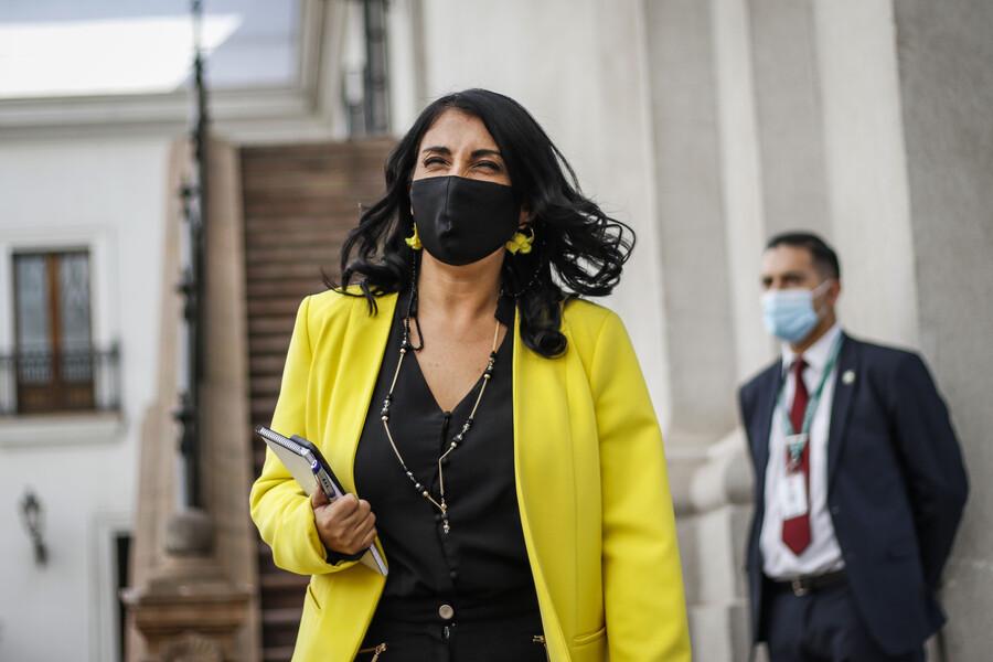 Karla Rubilar confirma renuncia de subsecretario de Servicios Sociales, pero no menciona conflictos con él