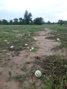 Nuestro distrito se está secando