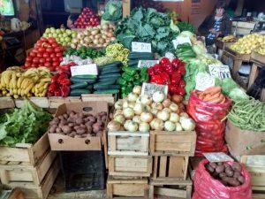 ¿Chile, potencia agroalimentaria?