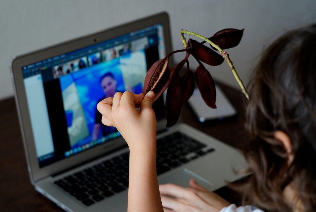 Pedófilos en Internet: ¿Qué consejos pueden seguir los padres para evitar situaciones peligros que involucren a sus hijos?