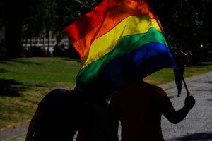 Matrimonio Igualitario: Comisión votará las 13 indicaciones presentadas por la UDI