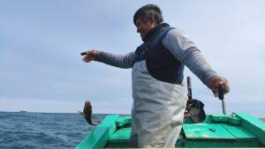 Pescadores, consumidores y tecnología: Una alianza para salvar los océanos