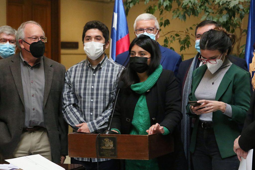 Diputados ingresan acusación constitucional contra ministro Raúl Figueroa