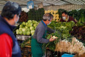 Lanzan proyecto para reducir desperdicio de alimentos en las ferias libres