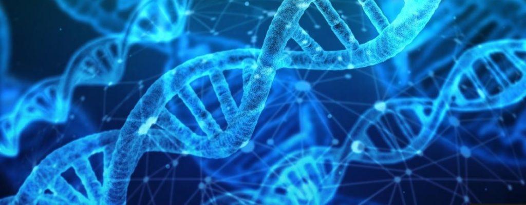 OMS emite sus primeras recomendaciones sobre la manipulación del genoma humano