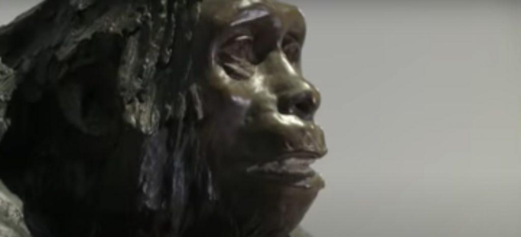 Los grupos sanguíneos de neandertales y denisovanos entregan relevantes antecedentes sobre su historia