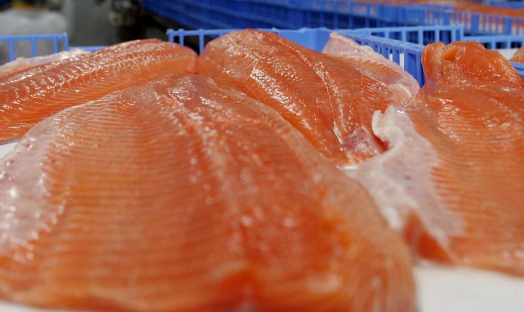 Un nivel alto del ácido omega-3 incrementa casi en cinco años la esperanza de vida