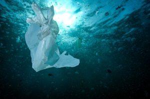 Día Internacional Libre de Bolsas de Plástico: Chile sigue siendo el primer país que más basura plástica desecha en Latinoamérica