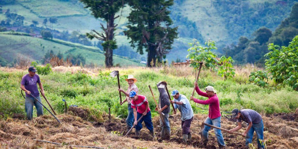 Biodiversidad de América Latina puede impulsar recuperación post pandemia