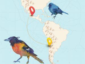 Atención niños y niñas: Museo de Bellas Artes ofrece talleres de invierno para crear junto a pares de México