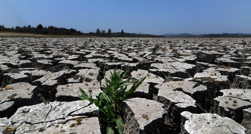 Los desafíos de Chile frente al último informe del IPCC