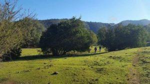 Tantehue, zona de sequía y protección