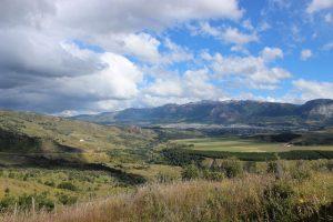 OPINIÓN | Millones de nuevos pinos en Aysén: ¿Y la política de suelo dónde está?