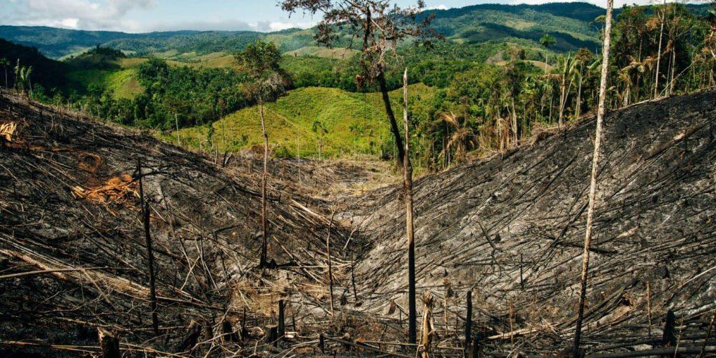 América Latina todavía es la región más peligrosa para defensores ambientales