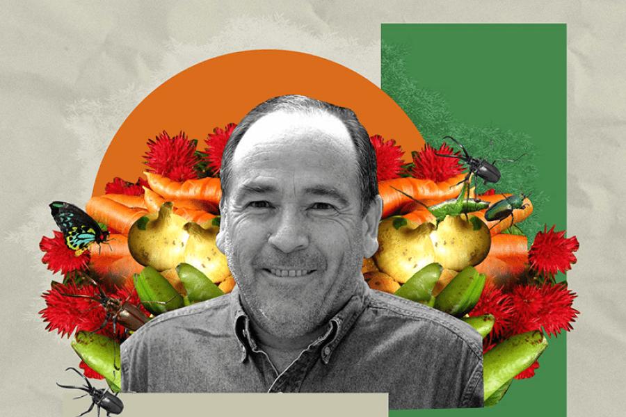 Miguel Altieri y nueva Constitución: Debe instalarse el concepto de soberanía alimentaria