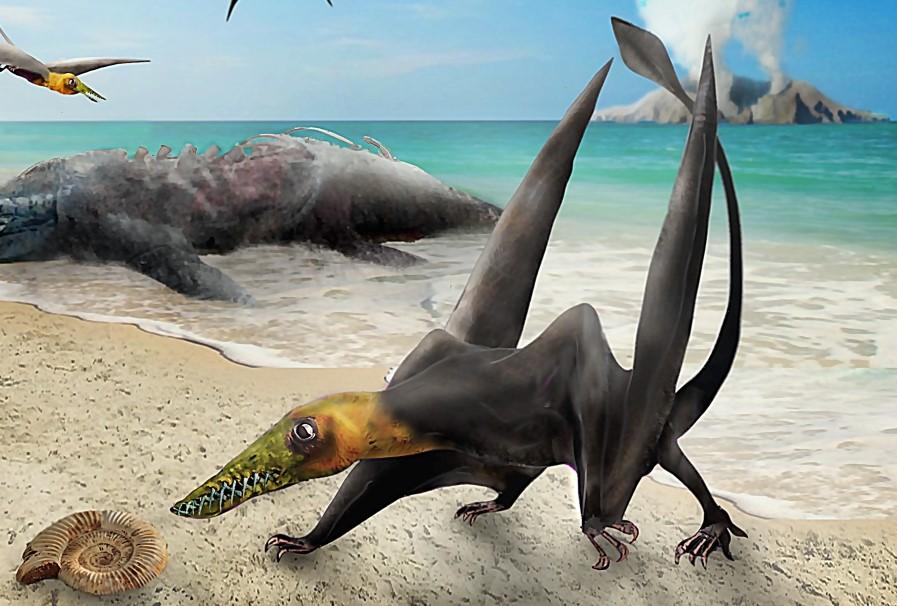 El «dragón volador» del Jurásico aparece por primera vez en Chile