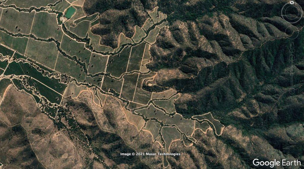 Científicos llaman a conservar corredores de vegetación nativa en viñedos de Chile central