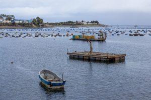 La batalla del borde costero: Exclusión de gobernadores desata nueva pugna con el gobierno