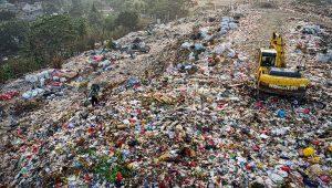 Chile necesita una ley de residuos orgánicos (hoy y no mañana)