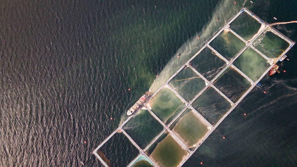 Más de 60 organizaciones solicitan terminar con concesiones acuícolas en áreas protegidas